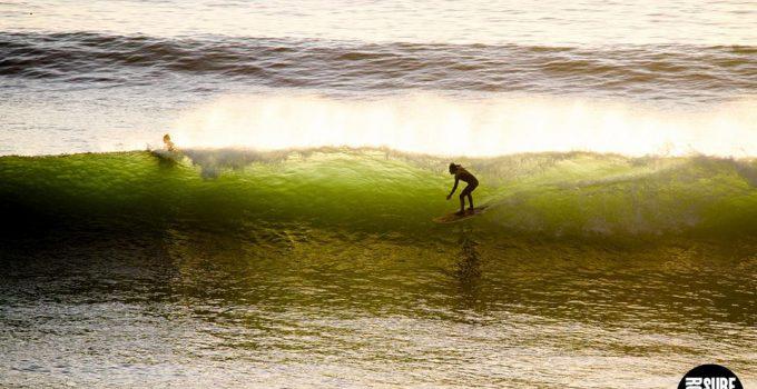 roots surf fest 4